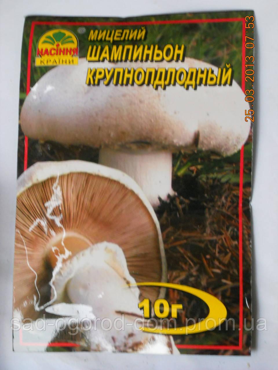 Мицелий Шампиньона Крупноплодного
