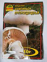 Мицелий Шампиньона Крупноплодного, фото 1