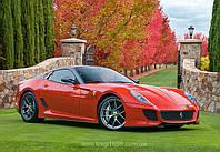 "Пазлы Castorland 500 элементов ""Ferrari 599 GTO"""