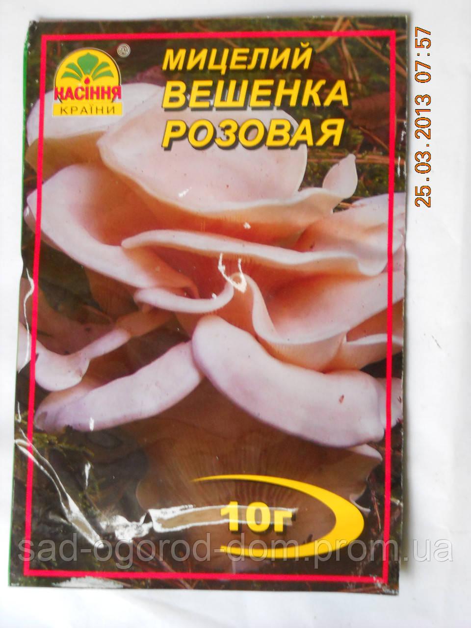 Мицелий Вешенки Розовой