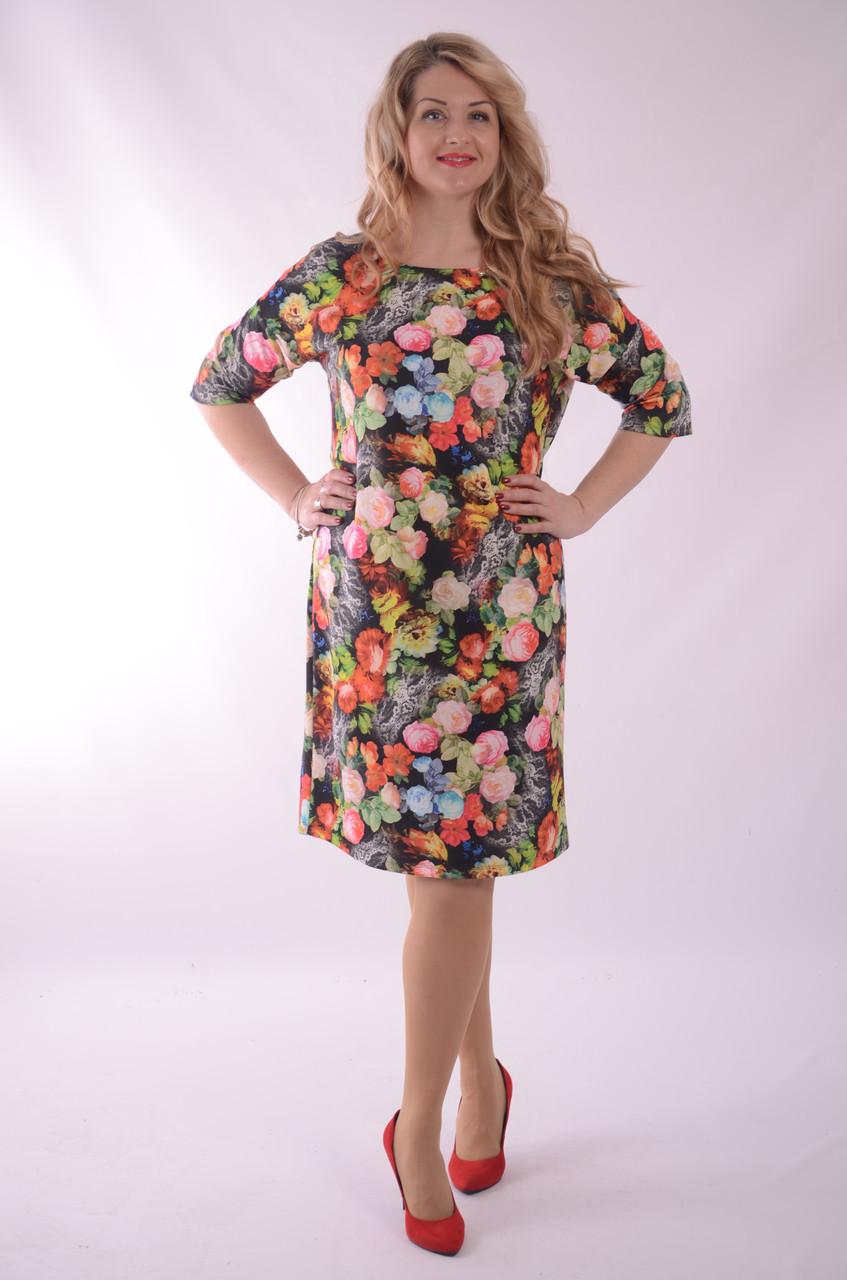 Платье свободного кроя трикотажное в цветах трапеция Пл 052-2 , 48,50,52 .