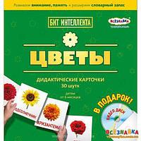 Карточки ЦВЕТЫ + DVD ДИСК