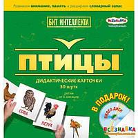 Карточки ПТИЦЫ + DVD ДИСК
