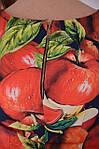 """Платье  Пл 070 с ярким """"фруктовым"""" 3-D дизайнерским принтом Dolce & Gabbana Яблоки , фото 2"""