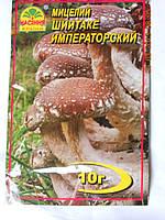 Мицелий Шиитаке императорского, фото 1