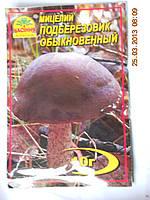 Мицелий Подберезовика обыкновенного, фото 1
