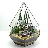 """Флорариум """"Пятиугольная пирамида""""-с эффектными растениями(суккулентами)-оригинальный подарок!"""
