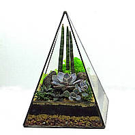 """Флорариум """"Простая пирамида"""", ширина -18 см, высота -28 см."""