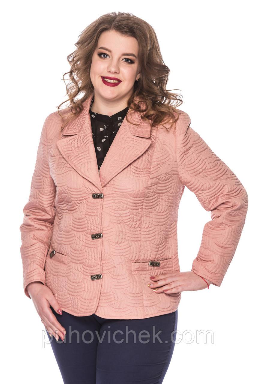 4294feb30ef5 Короткие женские куртки весенние большие размеры - Интернет магазин Линия  одежды в Харькове