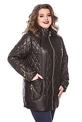 Весенние куртки и плащи женские от производителя