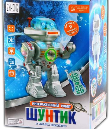 Робот Шунтик, фото 2