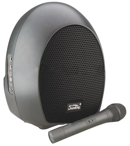 Активная акустическая система Soundking SKWH065U