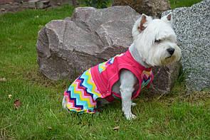 Комбинезон для собак Радуга, фото 2