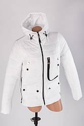 Демисезонная молодежная куртка Корона оптом в розницу