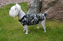 Жилет Камуфляж (Код: О 341) предлагается для всех пород собак. Жилет выполнен из плотного камуфляжного вельвета на флисовой основе, ткань достаточно теплая и не продуваемая.