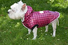 Жилет Шанс (Код: О 105) с капюшоном предлагается для всех пород собак. Жилет выполнен из плотной плащевой ткани в клетку + меховая подкладка барашек.