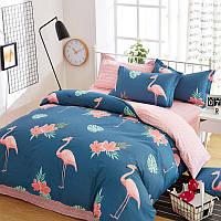 Комплект постельного белья Big Flamingos (полуторный) хлопок