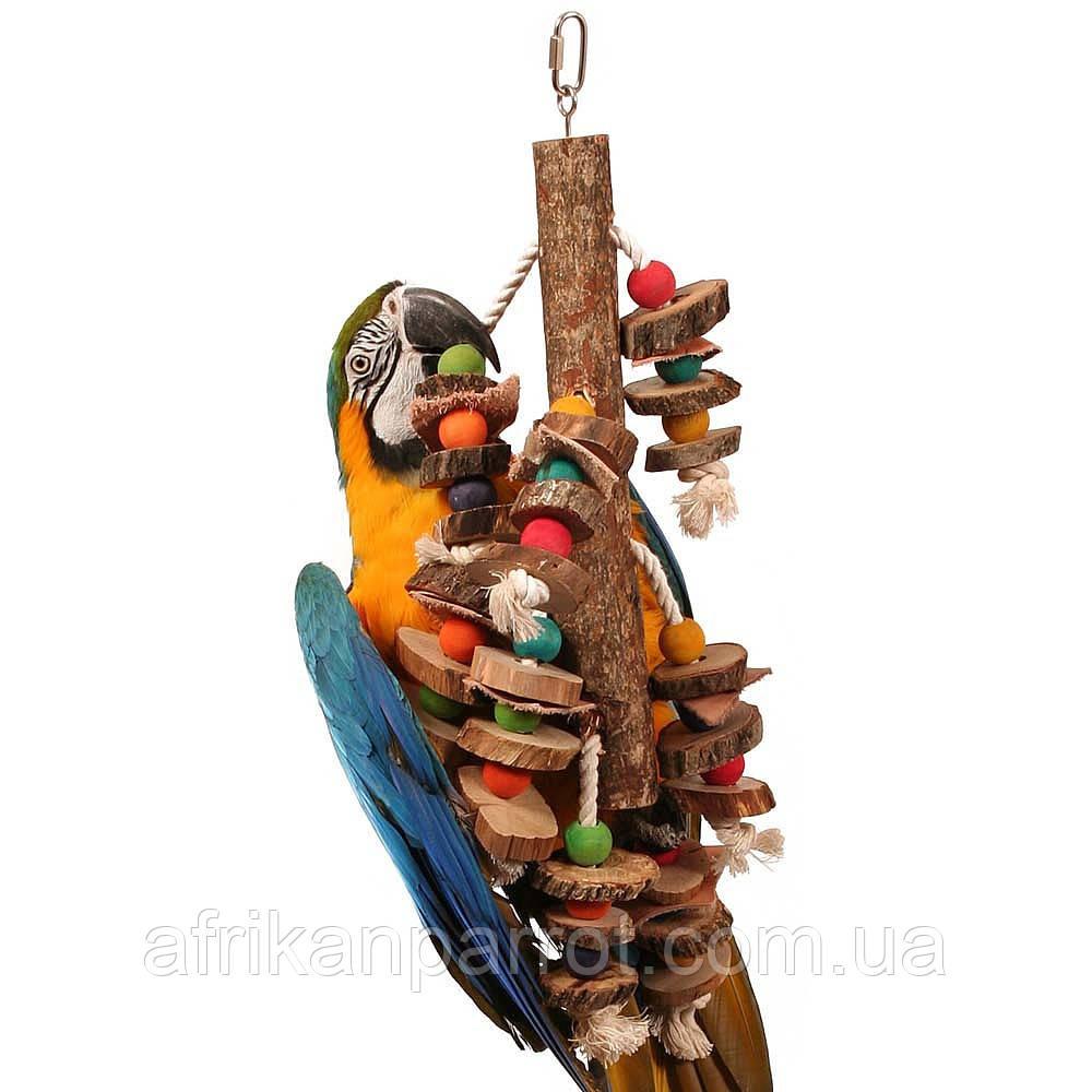 Игрушка для ары, какаду (Пеньки и веревки)