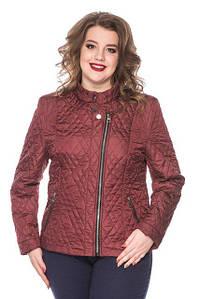 Куртки женские больших размеров