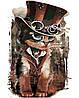 AS0172 Набор-раскраска по номерам Кот-чародей