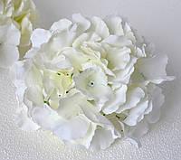 Головка гортензии белая крупная