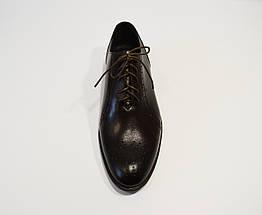Темно-коричневые кожаные полу-броги Tapi 6006, фото 2