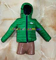 Демисезонные куртки для мальчика.