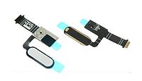 Шлейф (Flat cable) с кнопкой HOME для HTC 10 Lifestyle | One M10 (белый цвет)