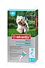 BAYER Advantix Адвантикс капли для собак вес 4-10 кг 1пипетка 1мл