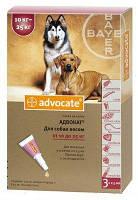 Advocate (Адвокат) краплі для собак вагою від 10 до 25 кг