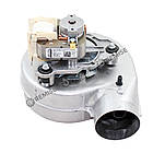 Вентилятор Ferroli Domicompact, Domina, Domitop, Domiproject F - 39817550, фото 4