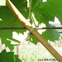 Паперовий дріт для підв'язування рослин Grond Meester, 500м (Італія), фото 3