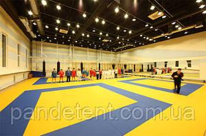 Борцовский ковер ( татами), маты спортивные для борьбы, дзюдо