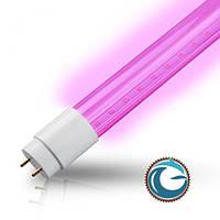 Fito cветодиодная LED лампа T8-2835-1.2F