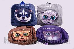 "Рюкзак дитячий ""Тварини: коти-собаки"", в асортименті"