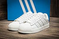 Кроссовки мужские Adidas Superstar, 1056-1
