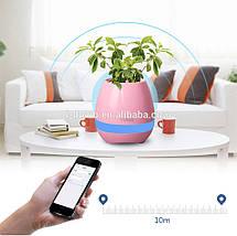 Музыкальный цветочный горшок TOKQI K3 - Bluetooth, световое сопровождение, фото 2