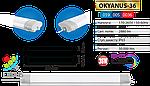 """Светодиодный пылевлагозащищенный LED светильник """"OKYANUS-36"""" IP65 36W 4200K, 6400K 600 мм , фото 3"""