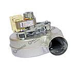 Вентилятор Ferroli F24D, RLG108/3800 32W - 39846780, фото 2