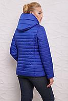 Стильна женская Куртка М-093 электрик (42-54 р)