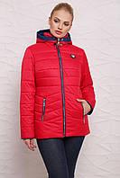 Женская демисезонная Комбинированная куртка М-094 красная с синим (44-54 р)