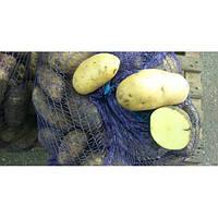 Картофель Гранада 3 кг ФХ Лилия