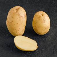 Картофель Мелоди 3 кг ФХ Лилия