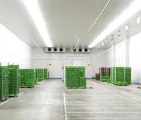 Промышленная холодильная,морозильная камера, фото 1