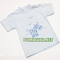 Футболка для новорожденного р.74 ткань КУЛИР 100% тонкий хлопок 4024 Голубой