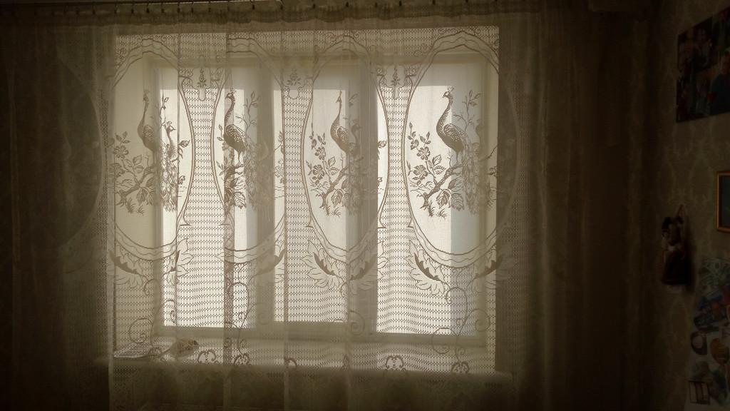 Тканевые ролеты Киев дешево Рулонные шторы Киев дешево