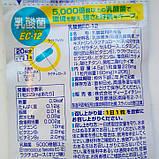 Молочнокислые бактерии EC-12, Курс на 20 дней- 20 табл. (DHC, Япония), фото 2