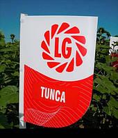 Семена подсолнечника Лимагрейн Тунка (засухоустойчив)  Tunca LG 2017 год