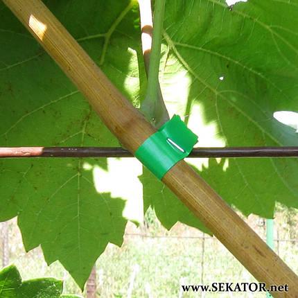 Стрічки (смуги) до садового степлера GrondMeester, 10 шт (Італія), фото 2