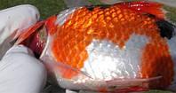 Лечение растений и рыбы от болезней и вредителей, фото 1